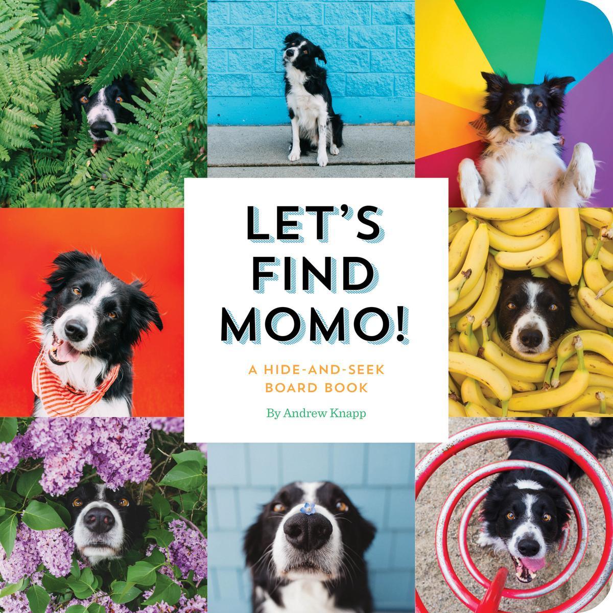 Let_s Find Momo_